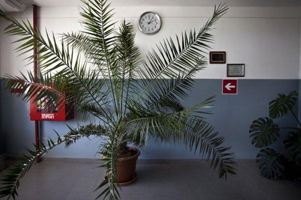 Untitled (corridor. Metsamor nuclear station)