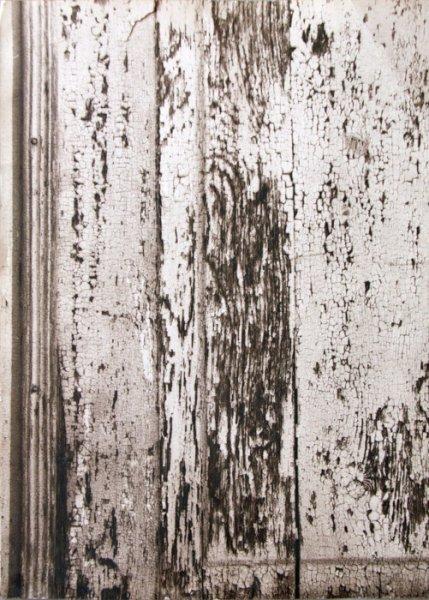 Untitled (door texture)