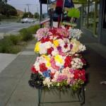 Glenn Sloggett. 2011. Plastic flowers